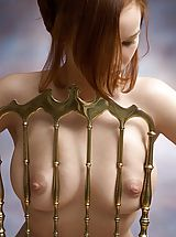 Nipple, Sylvia - Golden Chair