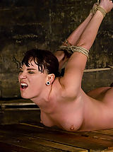 Fetish Nippels, Dana DeArmond, is stripped, bound, and forced to obey.