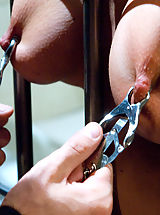 Big Nipples, Bribing an Officer: Business Woman Arrested and Ass Fucked in Bondage!